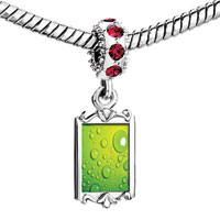 Charms Beads - red crystal dangle green backg clear bubbles Image.