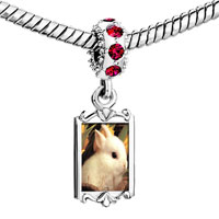 Charms Beads - red crystal dangle lovely white rabbit Image.