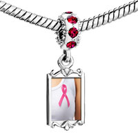 Charms Beads - red crystal dangle pink ribbon on breast Image.