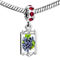 Charms Beads - red crystal dangle anti cancer superfruits blueberries Image.