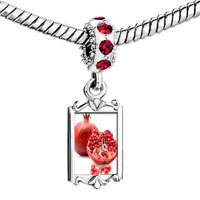 Charms Beads - red crystal dangle anti cancer superfruits pomegranate Image.