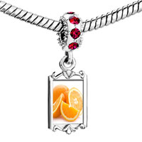 Charms Beads - red crystal dangle anti cancer superfruits citrus Image.