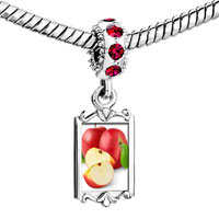Charms Beads - red crystal dangle anti cancer superfruits apples Image.