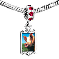 Charms Beads - red crystal dangle piggy face Image.