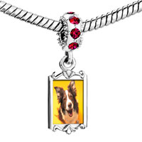 Charms Beads - red crystal dangle border collie dog Image.