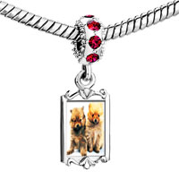 Charms Beads - red crystal dangle chow twins Image.