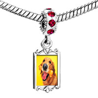 Charms Beads - red crystal dangle golden retriever bone Image.