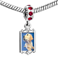 Charms Beads - red crystal dangle golden retriever puppy Image.