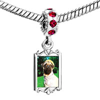 Charms Beads - red crystal dangle golfing pug Image.
