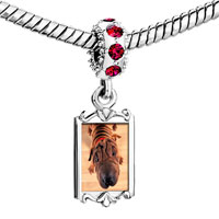 Charms Beads - red crystal dangle wrinkly dog Image.