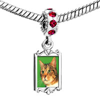 Charms Beads - red crystal dangle green eyed cat Image.