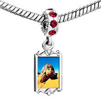 Charms Beads - red crystal dangle desert turtle Image.