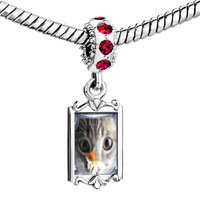 Charms Beads - red crystal dangle fishbowl cat fit &  bracelet Image.