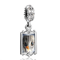 Clear Crystal Dangle Fishbowl Cat Fit Bracelet