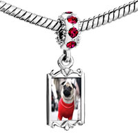 Charms Beads - red crystal dangle dressed up pug Image.
