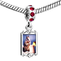 Charms Beads - red crystal dangle tropical squirrel Image.