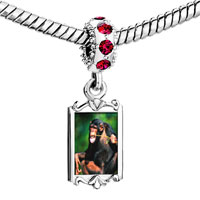 Charms Beads - red crystal dangle funny monkey Image.
