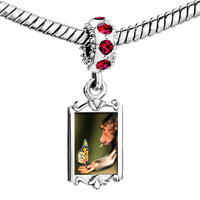 Charms Beads - red crystal dangle butterfly monkey Image.