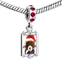Charms Beads - red crystal dangle teddy bear present Image.