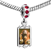 Charms Beads - red crystal dangle ice cream chimpanzee Image.
