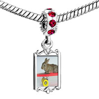 Charms Beads - red crystal dangle bunny skateboarder Image.