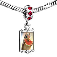 Charms Beads - red crystal dangle squirrel sweet watermelon Image.