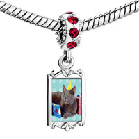 Charms Beads - red crystal dangle birthday cat Image.