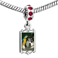 Charms Beads - red crystal dangle pirate dog Image.