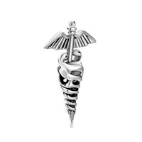 Silver Registered Nurse Caduceus Rn European Bead Charms Bracelets