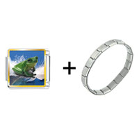 Items from KS - surfing frog combination Image.