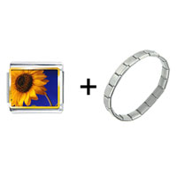 Items from KS - yellow sunflower combination Image.