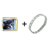 Items from KS - grey kitty combination Image.