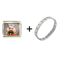 Items from KS - christmas jester dog combination Image.