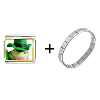 Items from KS - st.  patricks day frog combination Image.