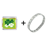 Items from KS - green four leaf clovers combination Image.