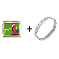 Items from KS - tio speaking parrot combination Image.