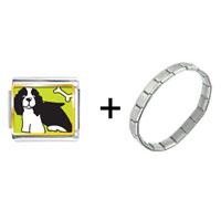 Items from KS - springer spaniel dog combination Image.