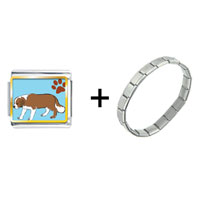 Items from KS - saint bernard dog combination Image.