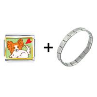 Items from KS - papillion dog combination Image.
