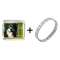Items from KS - gold plated travel australian shepherd photo italian charm bracelets combination Image.