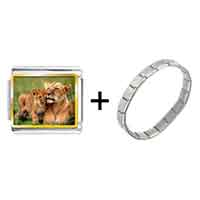 Items from KS - gold plated animal cub photo italian charm bracelets combination Image.