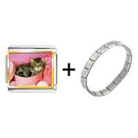 Items from KS - tabby cat photo italian charm combination Image.