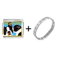 Items from KS - boston terrier photo italian charm combination Image.