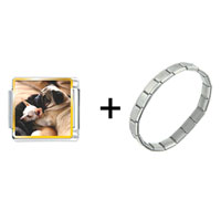 Items from KS - puppy pals combination Image.