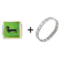 Items from KS - weiner dog combination Image.