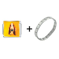 Items from KS - basset hound dog combination Image.