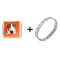 Items from KS - fox terrier combination Image.