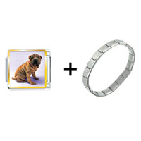 Items from KS - shar pei dog photo charm combination Image.