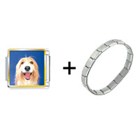 Items from KS - bearded collie face combination Image.