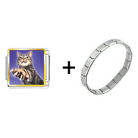 Items from KS - action cat combination Image.